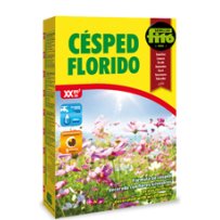 Cesped florido uso general