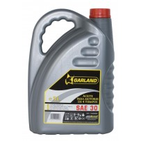 Aceite lubricante motor 4T 5L
