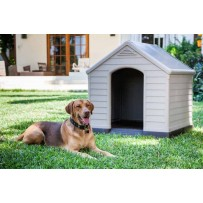 Caseta perro dog kennel