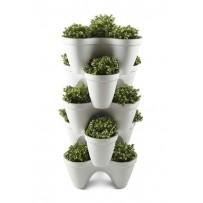 Ivy planter de Keter