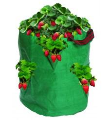 Bolsa de plantación terraza