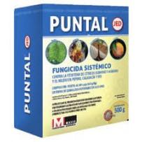 Fungicida PUNTAL de Massó