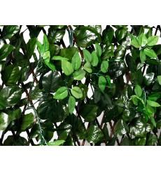 Celosía extensible de mimbre con hojas y brotes