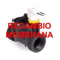 Recambio membrana electroválvula baja presión RPE