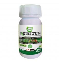 Purín de Equisetum Massogreen