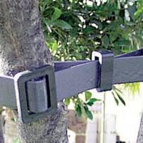 Cinturón entutorar completo con hebilla