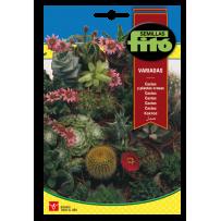 Cactus y Plantas crasas, variados