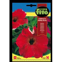 Petunia híb. compacta enana roja