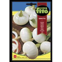 Cebolla Barletta blanca temprana