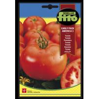 Tomate AMÉRICA-3, mata alta