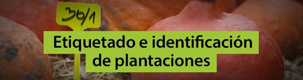 Etiquetado e identificación plantaciones