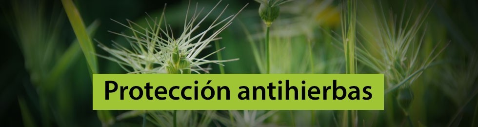 Protección antihierbas
